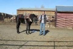 cc-and-saddle